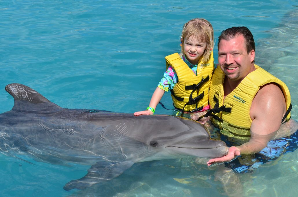 Swimming with dolphins in Mexico non-toy gift