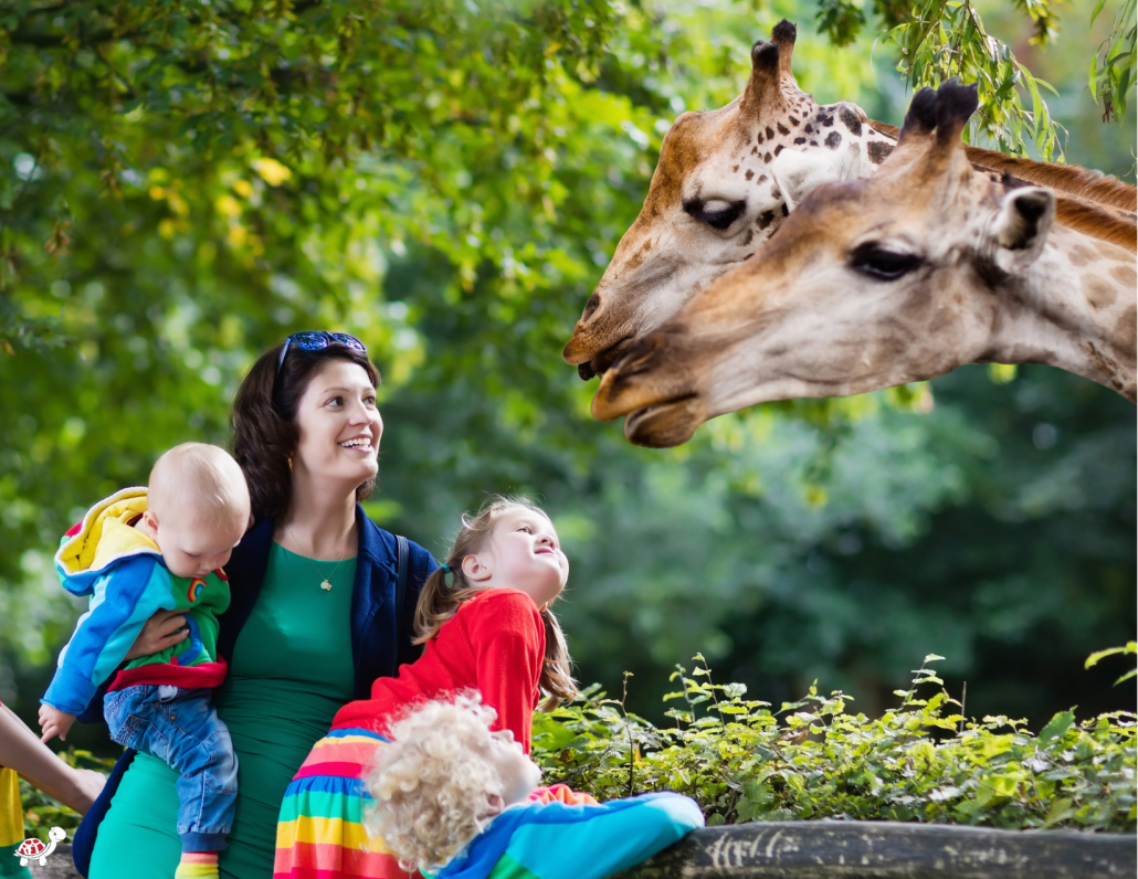Zoo membership is non-toy gift for kids