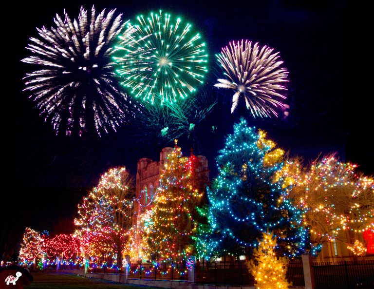 Christmas Lights Tours USA