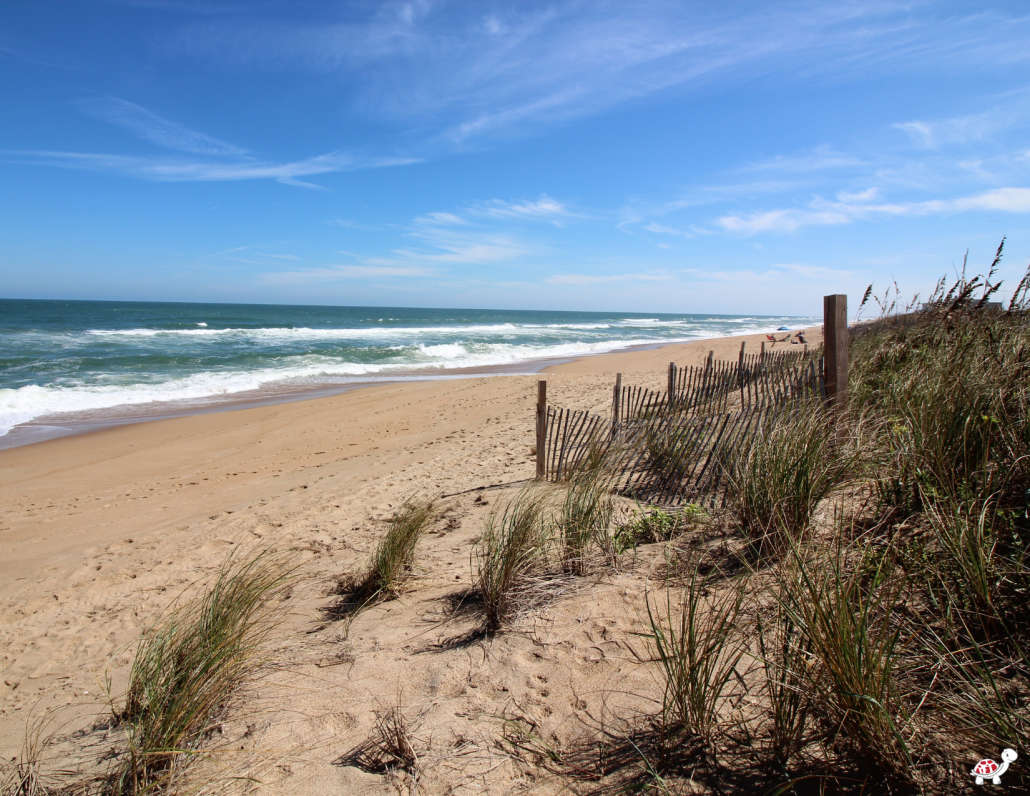 things to do in duck nc beach
