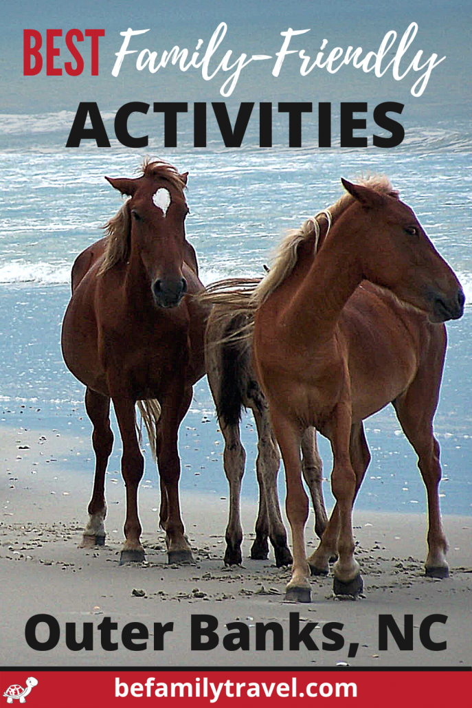 Things to do OBX wild horses in Corolla