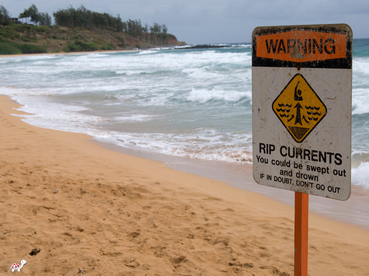 rip current safety for kids