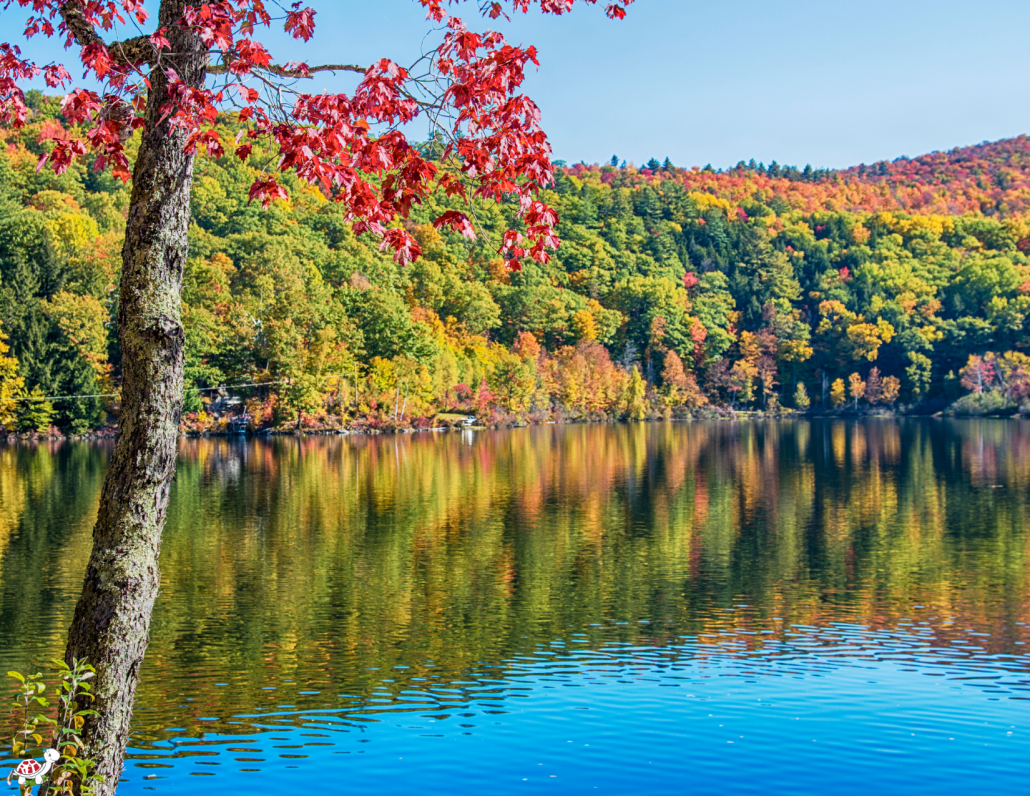 where to go for fall break in USA 2021